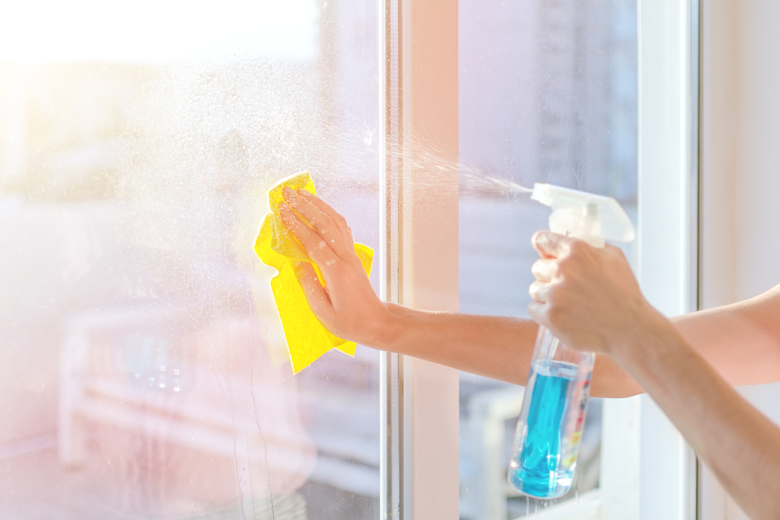 Day Cleaning Service Michigan