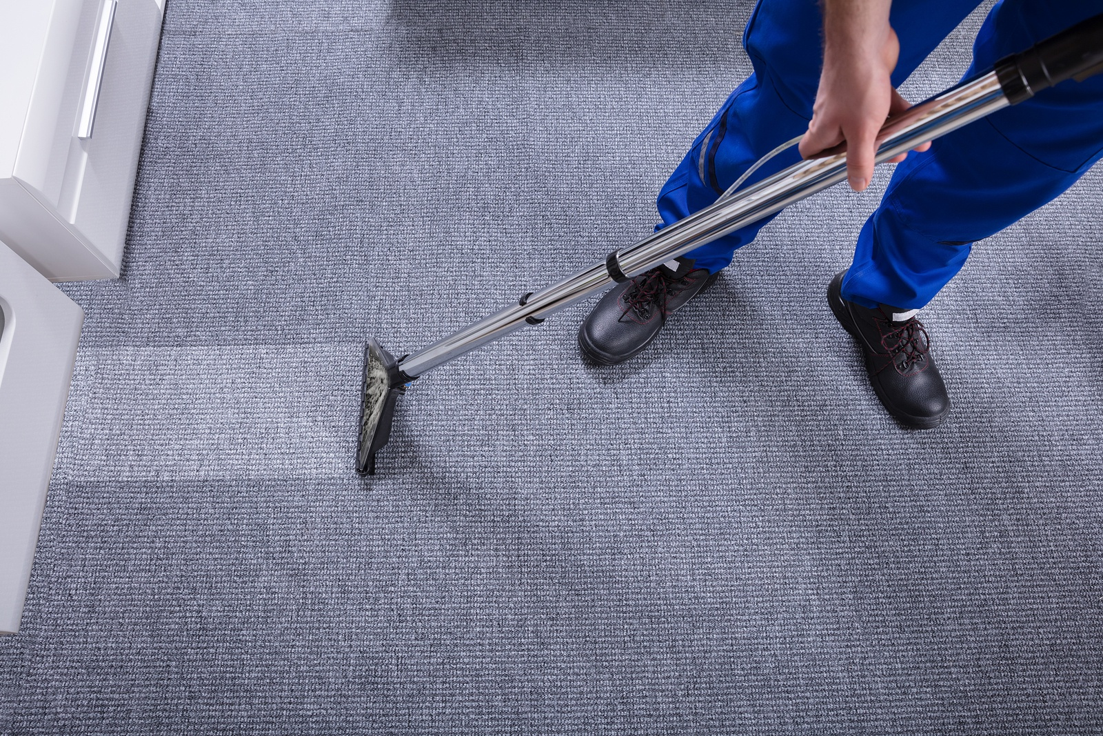 Image result for carpet cleaning companies